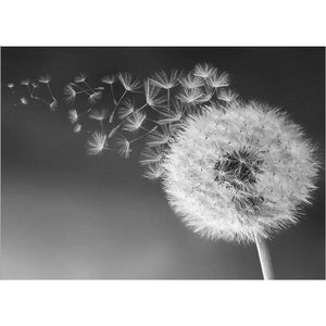 Pusteblume Black and White - DIY Diamond Painting | Eckige Steine/ Runde Steine