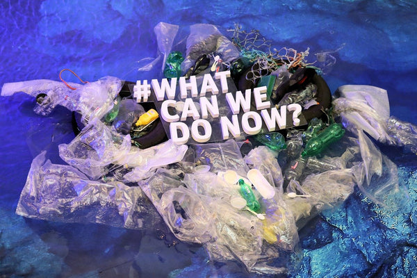 How can you reduce your plastic consumption?