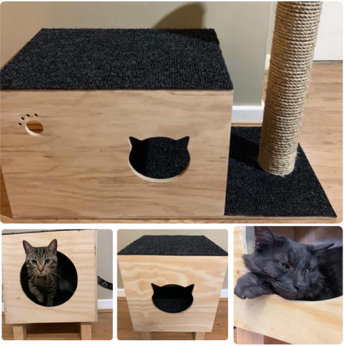 Scratch & Climb Condo Package - Indoor