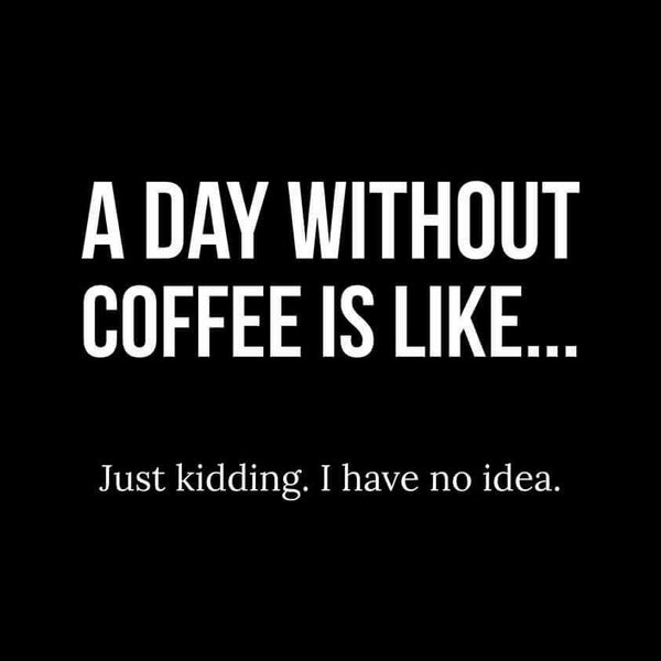 A Day Without Coffee Is Like... Just Kidding, I Have No Idea. - Roadkill T Shirts