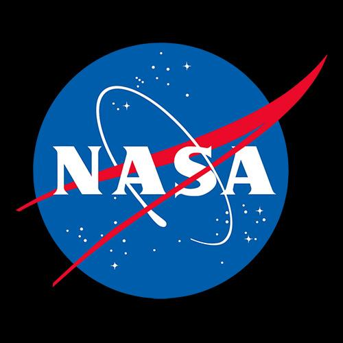 NASA Officail Meatball Logo