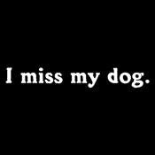 I Miss My Dog - Roadkill T Shirts