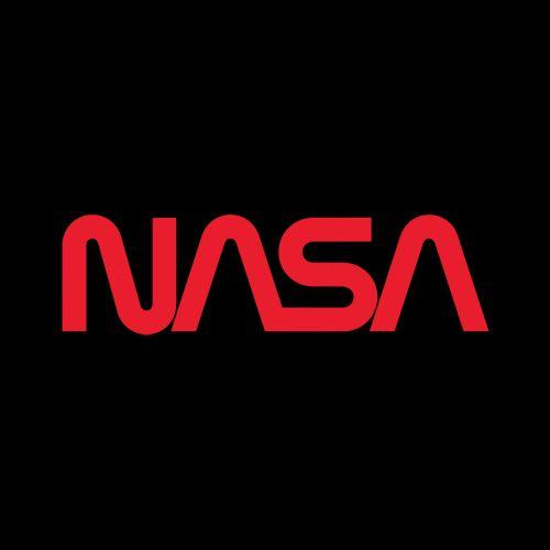 NASA Official Worm Logo