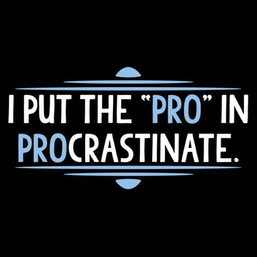 I Put The Pro In Procrastinate - Roadkill T Shirts
