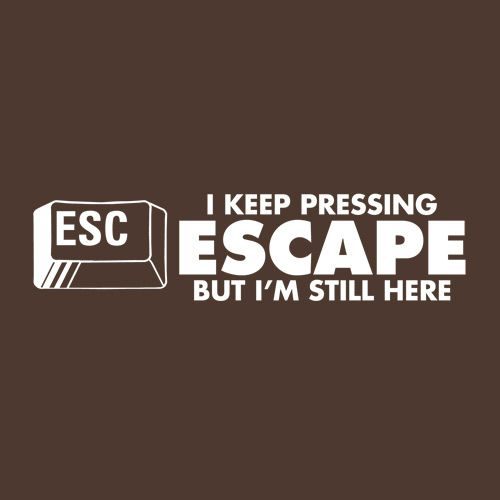 I Keep Pressing Escape But I'm Still Here - Roadkill T Shirts