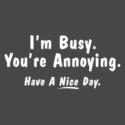 Im Busy You're Annoying Have A Nice Day