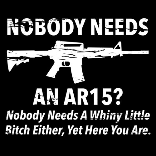 NoBody Needs An AR15? Nobody Needs A Whiny Little Bitch Either, Yet Here You Are