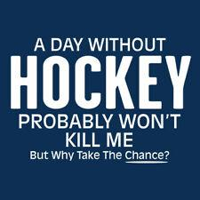 A Day Without Hockey Probably Won't Kill Me But Why Take The Chance