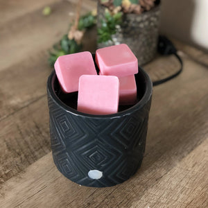 Slice of Summer wax melts