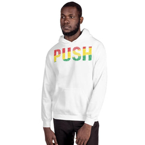 PUSH Pan-African Colored Unisex Hoodie - pyerses-bookstore-and-clothing.myshopify.com
