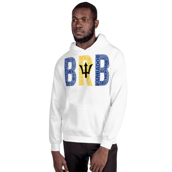 BARBADOS National Flag Inspired Unisex Hoodie - pyerses-bookstore-and-clothing.myshopify.com