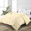 Luxury Soft Ivory Comforter