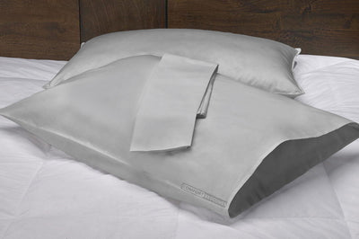 Egyptian Cotton 1000 TC Light Grey pillow cases