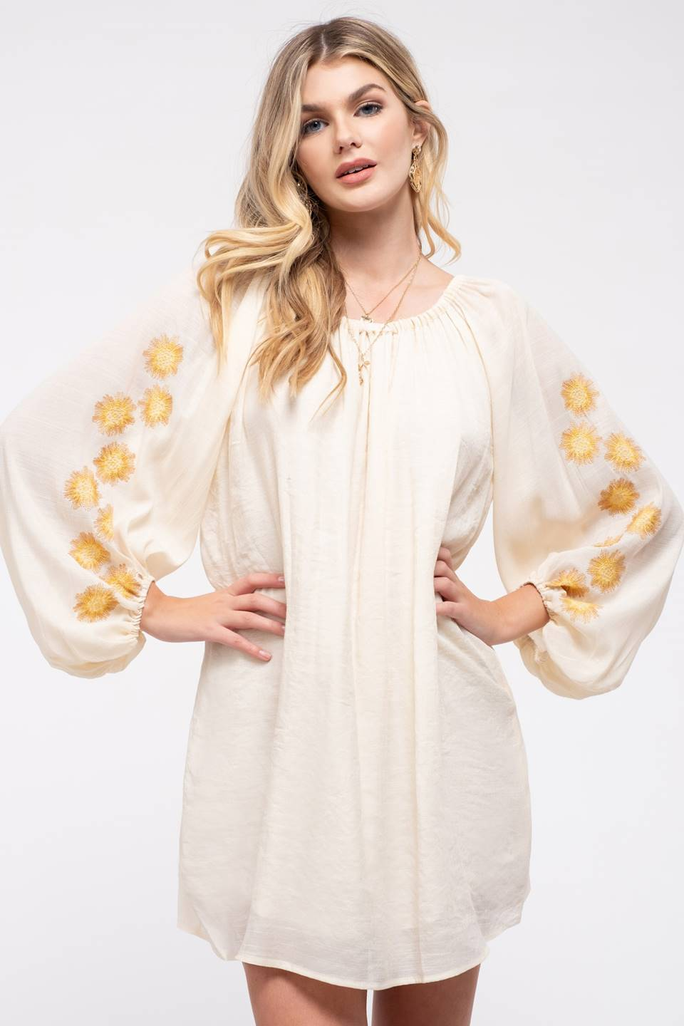 Embroidered Balloon Sleeve Dress