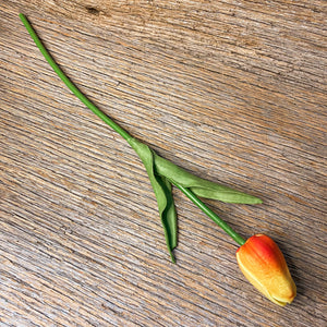 Real-Fee Tulip Stems