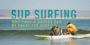 SUP Surfing: Why Paddle Boards Can Be Great For Surfing