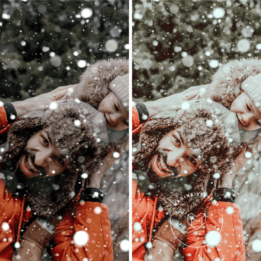 WINTER WONDERLAND | preset by Maxine Stevens