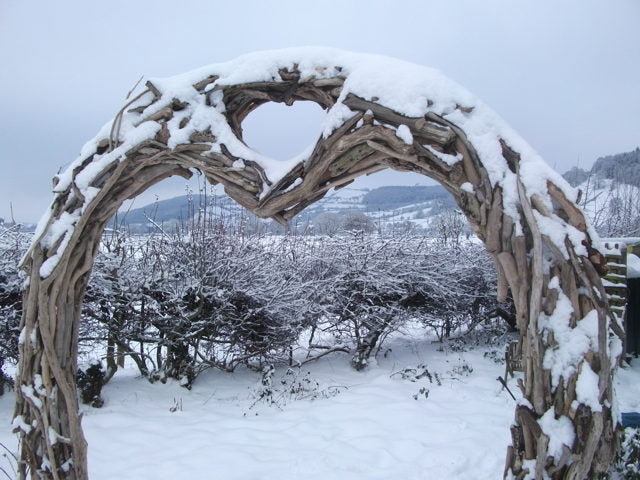 driftwood wedding arch in snow