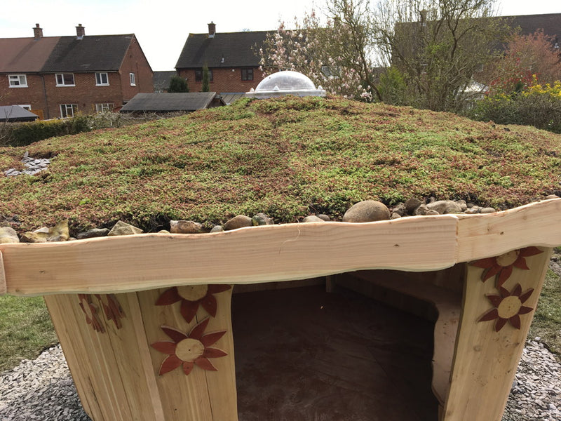 sedum-roof-on-shelter