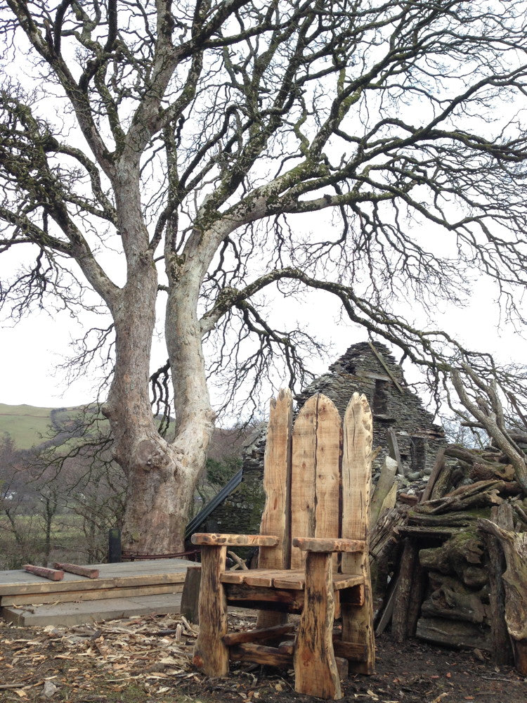 giant woodland story tellers chair