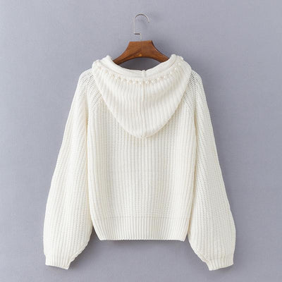 Fashion Hooded Long Sleeve Plain Knitting Sweaters