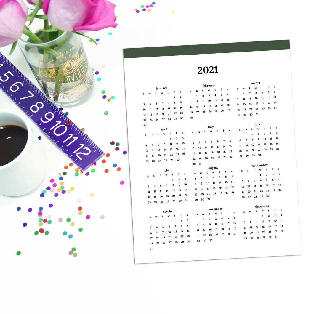 2021 Year At A Glance | Classic-Rings and Disc Planner-Confetti Saturday