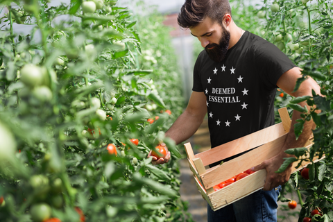 Bearded man picking fruit in his garden, wearing a black deemed essential tshirt