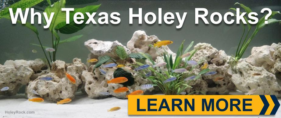 image of why texas holey rocks