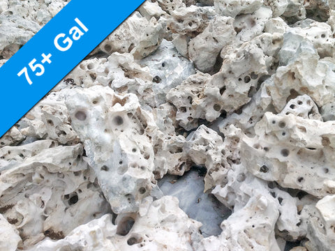 60 lbs. of LARGE Size Texas Holey Rock - FREE SHIPPING
