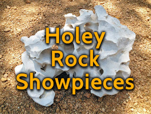 Holey Rock Showpieces
