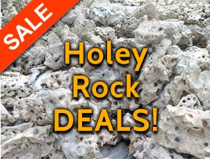 image of texas holey rock for sale