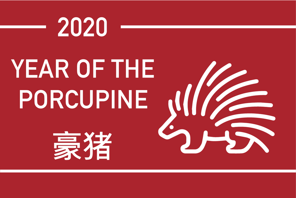 The Year of the Porcupine 2020