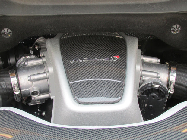 McLaren Carbon Fiber Engine Covering