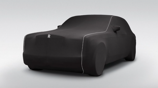 Ghost Indoor Car Cover