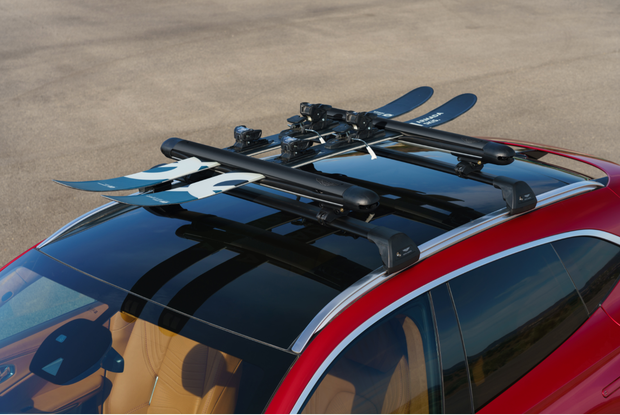 DBX Roof Mounted Ski Rack