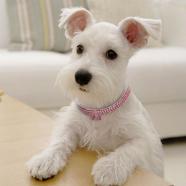 Dog Princess Collar