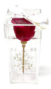 Crystal Clear Single Rose