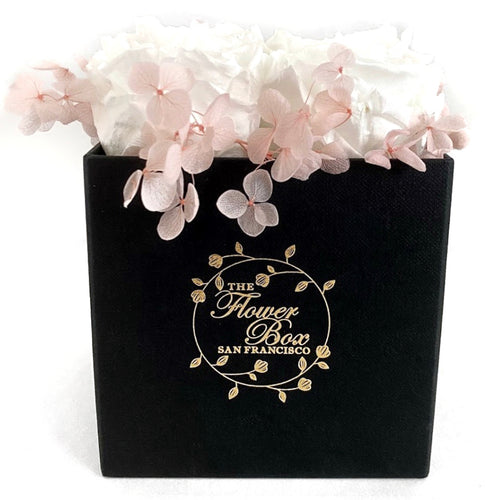Black Flower Box with Hydrangea- 4 Roses