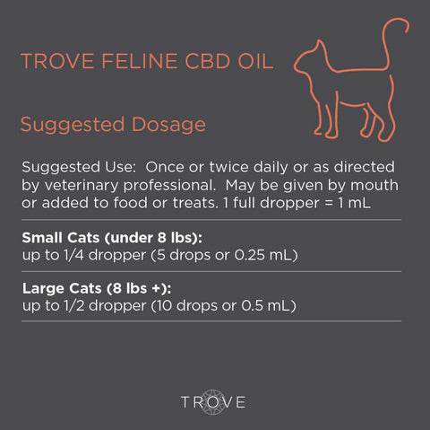 CBD dosage for cats