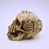 James Ryman's Breaking Out Design Skull Sculpture - The Cranio Collections