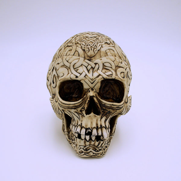 Celtic Skull Storage Box - The Cranio Collections