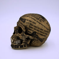 Dracula's Tale Skull Sculpture - The Cranio Collections