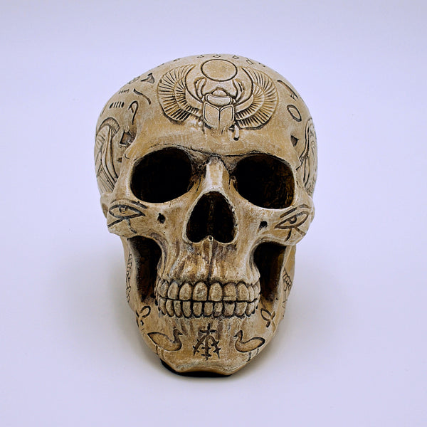 Egyptian Hieroglyphic Design Skull - The Cranio Collections