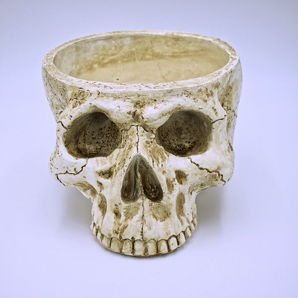 Large Weathered Skull Design Plant Pot - The Cranio Collections