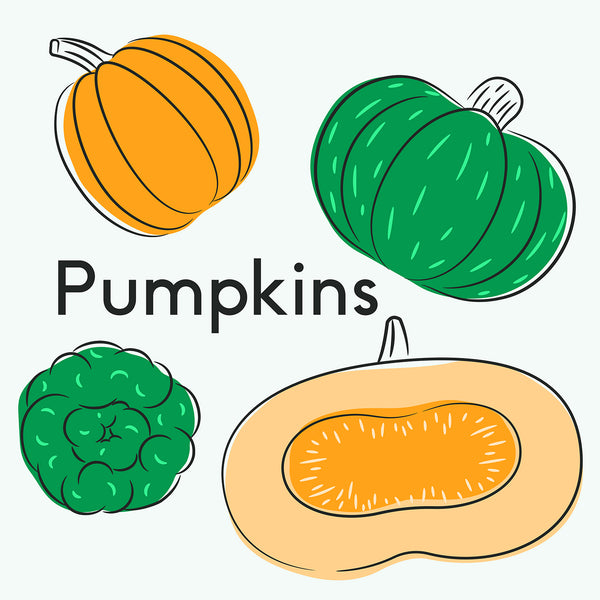 Picking Pumpkin Species