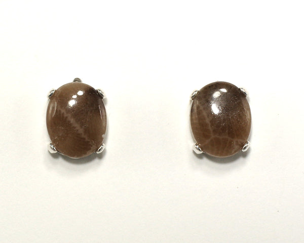 10x8mm Petoskey Stone Earrings
