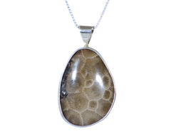 32mm x 24mm Free-form Petoskey Pendant