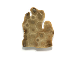 Petoskey Stone Lower Peninsula Magnet