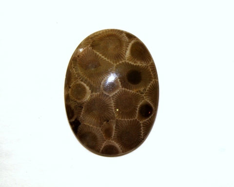 Petoskey Cabochon 30x40mm