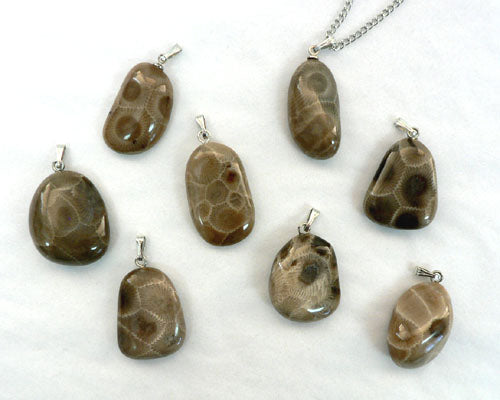 Polished Petoskey Freeform Nugget Pendants